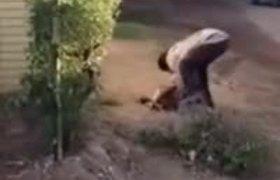 #DenunciaCiudadana: Captan a hombre matando a un perro a pedradas en Culiacán