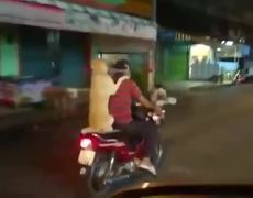 Dog ride with its owner in his scooter