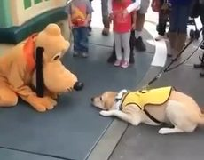 #VIRAL - Dog excited about meeting Pluto