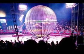 Empleados del circo inician pelean con Exalcalde y Regidor