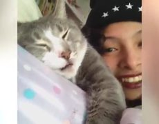 Most funny animal on Vines of the Week 1 March 2014