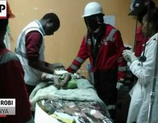Raw - Baby Rescued From Collapsed Building in Kenya