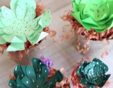 YUYA - Make Paper Plants