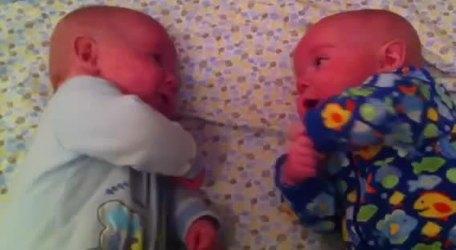 #CUTE - Sweet talk between twins babies