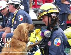 Last Surviving 9/11 Rescue Dog Laid to Rest