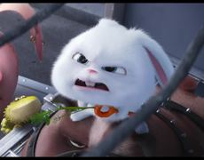 The Secret Life of Pets - Official Movie CLIP: The Flushed Pets (2016) HD - Kevin Hart, Louis C.K. Movie