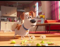 The Secret Life of Pets - Official Movie CLIP: Trashing the Apartment (2016) HD - Louis C.K. Movie