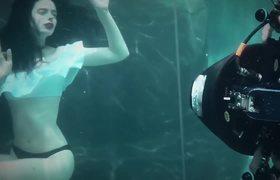 Krysten Ritter Stars in New Anti-SeaWorld PETA Campaign