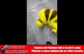 Pinto a su Perro como PIKACHU de POKEMON #PIKACHUDOG #PIKACHUPERRO