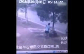 #VIRAL - Man cuts a tree to steal bike in China