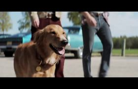 A DOG'S PURPOSE - Official Movie Trailer (2016) HD - Britt Robertson Drama Movie