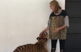 Cara Delevingne Plays With A Tiger In Mexico