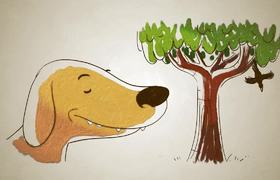 How Dogs Smell? | TEDx