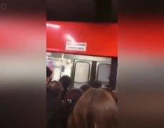 #LADYCONFLICTIVA - Mujeres se desgreñan dentro de vagón del Metro