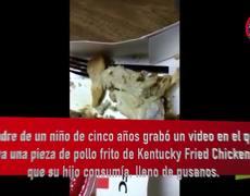 Niño encuentra gusanos en pollo KFC