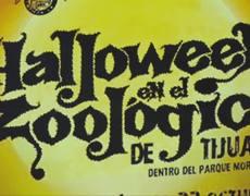 Halloween en el Zoologico de Tijuana - Ayuntamiento de Tijuana