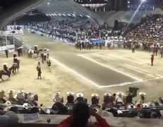 Governor of Mexico falls on horseback