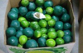 Decomisan droga en forma de limones en Nogales, Sonora