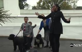 Michelle Obama, Family's White House Christmas Tree