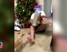 Man Defends Cat That Attacked Him While Opening Christmas Presents