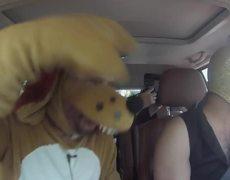 Escorpión Dorado y Perro Guarumo al volante