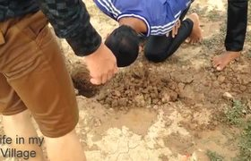Wow! Amazing Children Catch mouse in the water- How to Find Rat in Cambodia go to be Viral videos