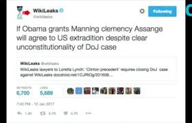 Assange Says He Will Return To U.S.
