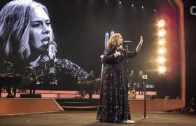 Adele's War With Bugs