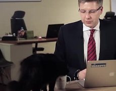Cat interrupts mayor of Riga's live interview
