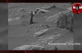 Supustas imagenes de arbol en Marte