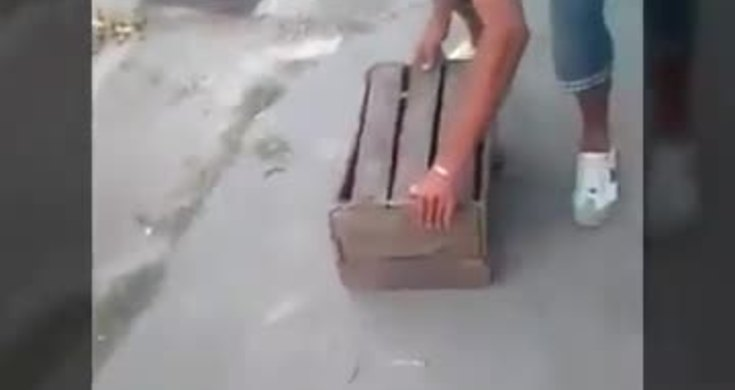 #AnimalCruelty: Men burn dog to death in Cuba