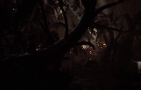 AGONY - ''Floating Forest'' Gameplay Demo