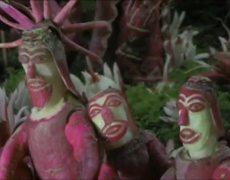 News Mexico Farmers Carve Nativity Scene of Radishes