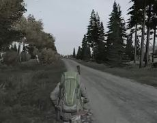 Tried to highfive a guy coming out of Grishino Dayz Video