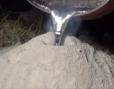 Animal Cruelty Artist full of boiling aluminum to ant