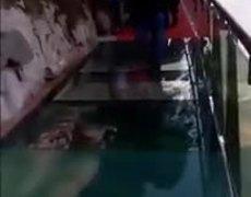 #VIRAL: Tourists terrified of cracking glass bridge prank