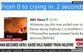 Hombre intenta salvar a Conejo en Incendio