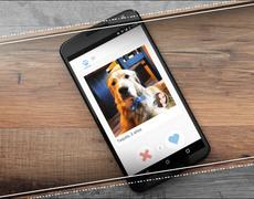 Tu perro podría encontrar pareja con esta app