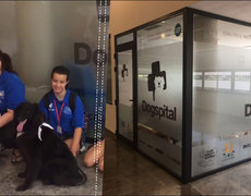 Dogspital, nueva propuesta en España