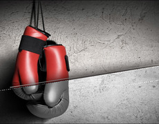 Two Boxers KO Each Other