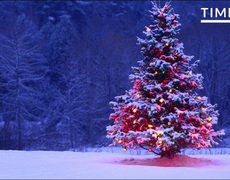 The Pagan Origins of Your Christmas Tree