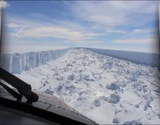 The Biodiversity Hidden On The Larsen C Glacier