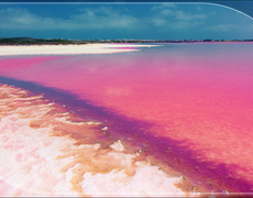 The World's Pink Lakes