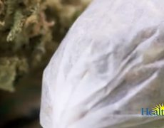 Marijuana Use Among Adults