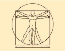 El cuerpo tiene un nuevo órgano ¿Sabes para qué funciona?