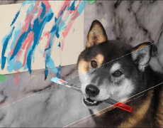 Dogs that make art on their own