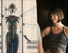 Evangeline Lilly brings the sting in the next Avengers movie