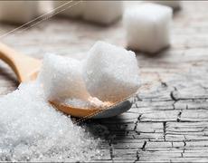 The War on Sugar