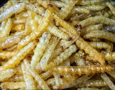 Maggots: to eat or not to eat?