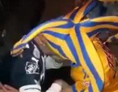 Aficionado Tigre consuela a Rayado